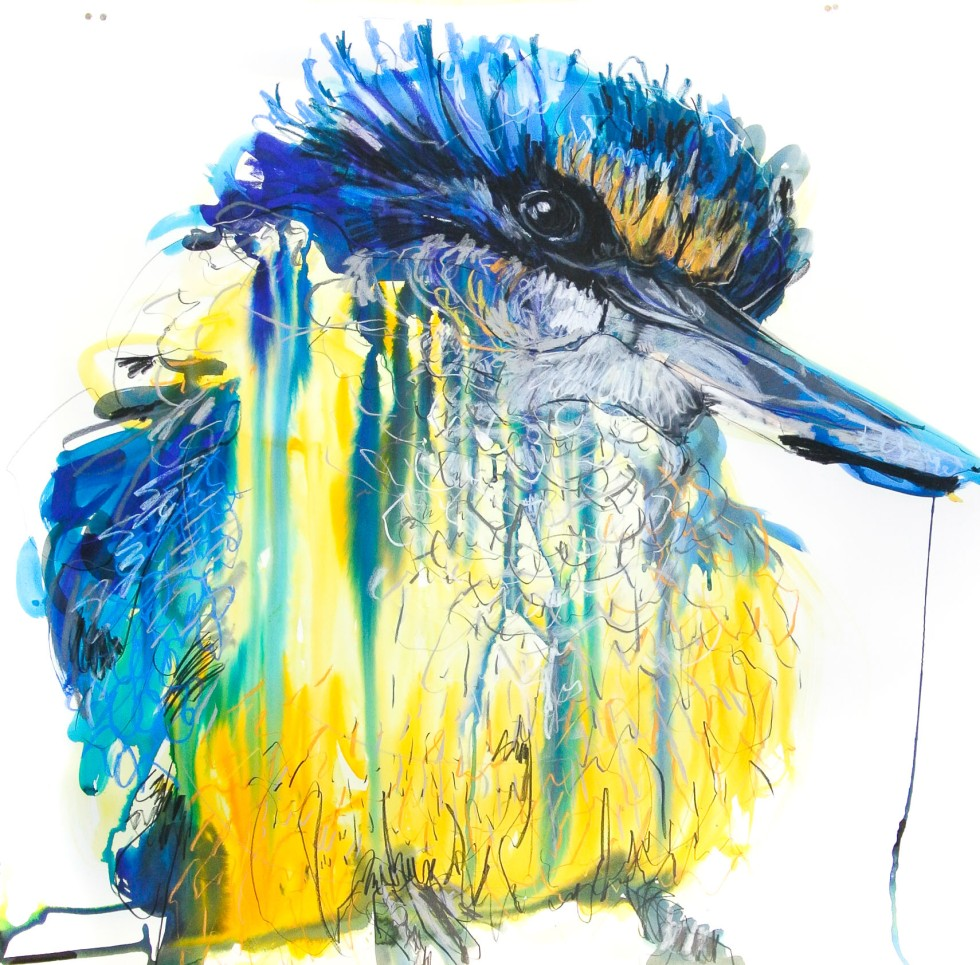 Sacred Kingfisher 4_100x100_17