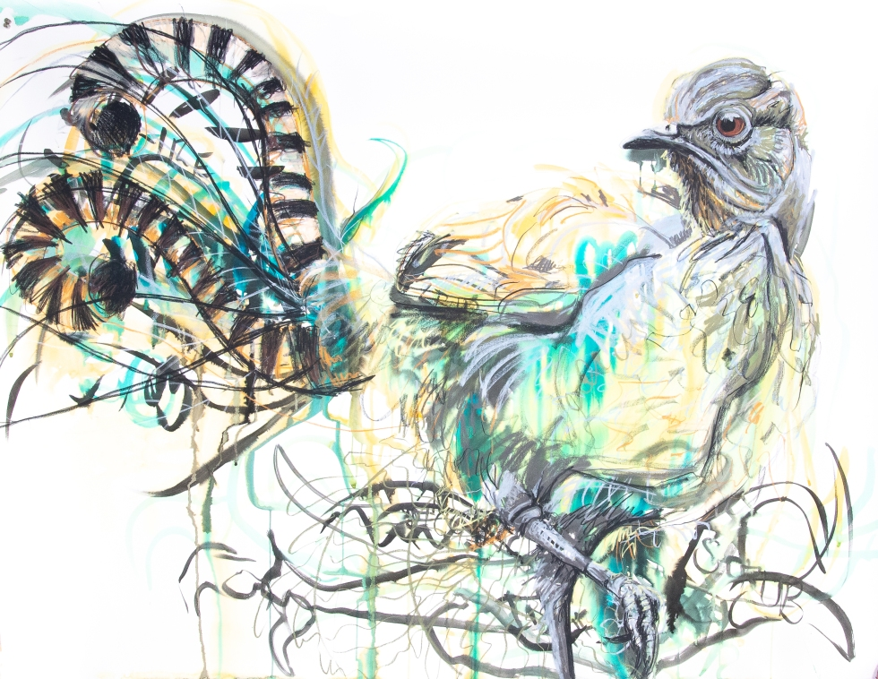 Superb Lyrebird 2 (Memories of Tarra Bulga National Park)_150by114cm_29June19