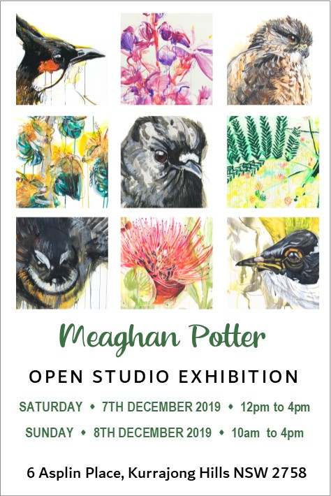 Meaghan Potter Open Studio Exhibition Invite FRONT